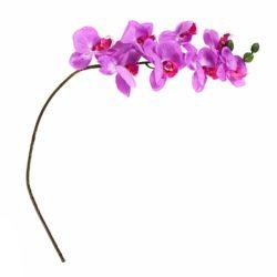 №19 Орхидея фиолетовая