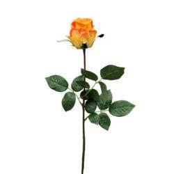 №15 Роза Джессика