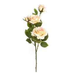 №16 Роза чайная