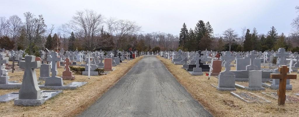 Гранитные памятники на кладбище